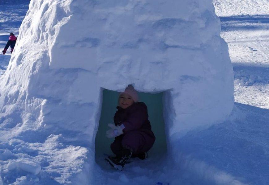 igloo blanche
