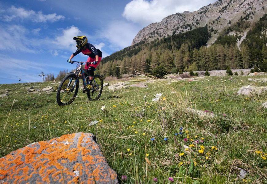 Bike Park Montclar