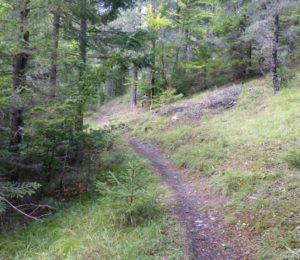 Randonnée la forêt du Galisson