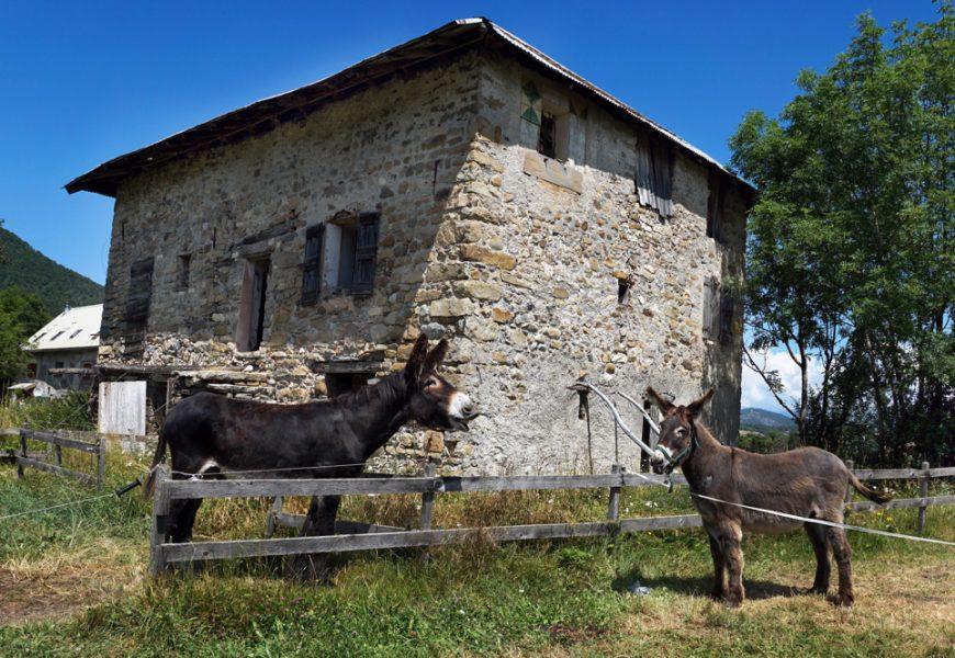 la Maison du Mulet