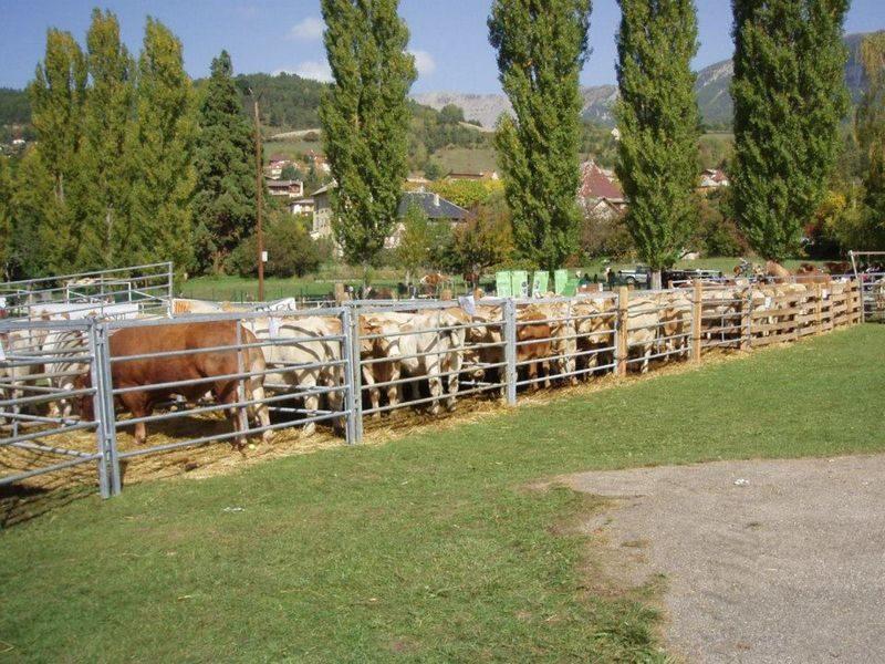 Foire agricole Seyne